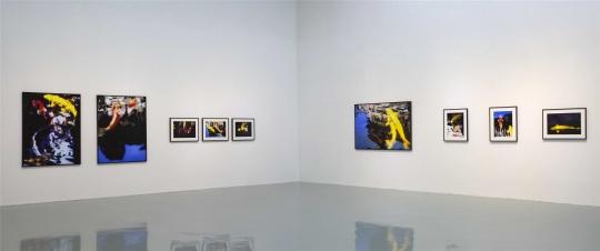 艾米李画廊双展开幕,夏日里的别样奇境幻景