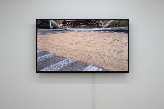 郑江 《独贵塔拉》 时长06`04` 高清录像 2020