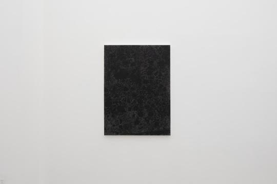 卜云军 《无题-花儿》 130×95cm 纸上油画棒 2020