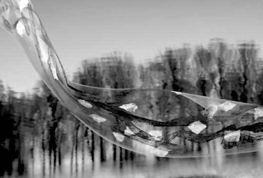《风之痕黑白001》 70×46cm 艺术微喷 2020