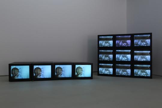 瑞贝卡霍恩(Rebecca Horn ) Performance 1 18分53秒16mm胶片、彩色 1972  Performance 2 35分18秒16mm胶片、彩色 1973