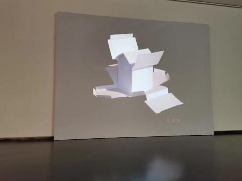 拉比亚·纳赛尔《房间》尺寸可变动态视频2005
