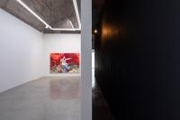 探索赤色记忆的轨迹,仇晓飞个案研究展亮相新世纪当代艺术基金会