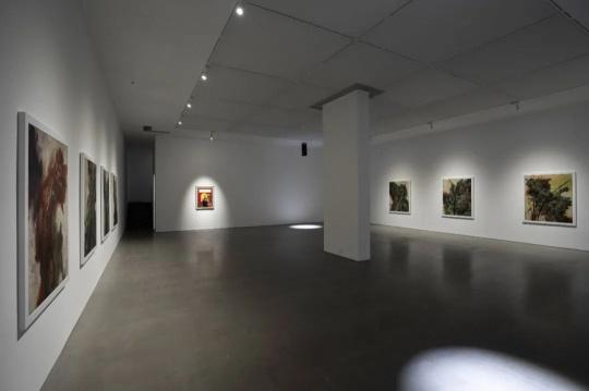 韩国艺术家崔玄周的各种不适与不屑,国内首场个展亮相Spurs Gallery