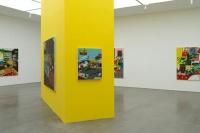 SPURS画廊希拉里·佩西斯个展,吹自太平洋彼岸的山谷之风