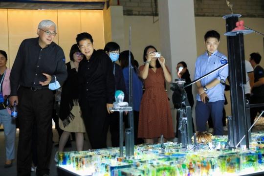 """深圳公共艺术季传递""""智识"""",将选择权交给观众"""