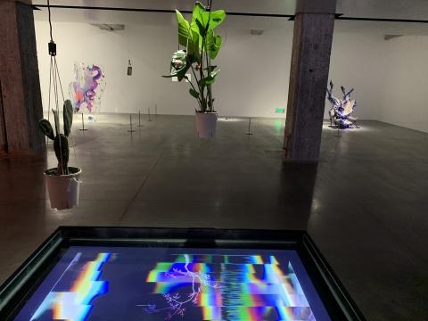 陆飞 & 雷剑豪 《一一》人工智能控制的环境、植物、水、屏幕 2019