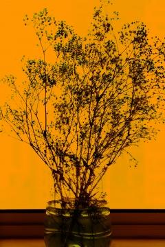 《格物系列-橙色4#》 80×53.4cm艺术微喷2020