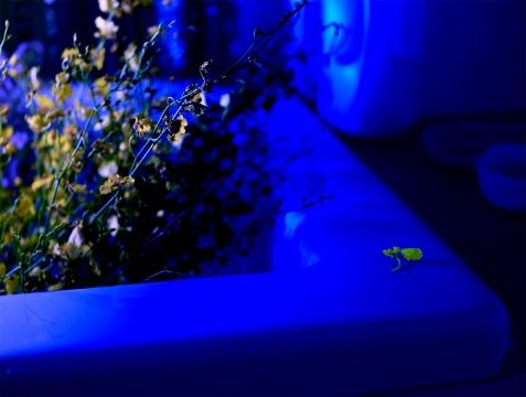 《格物系列-蓝色20# 》 73.4×110cm艺术微喷 2020