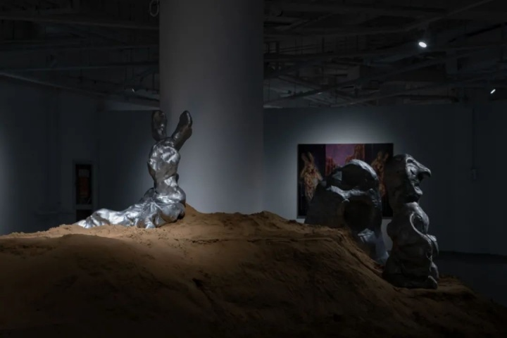 陈曦:艺术是黑暗时刻的一束光