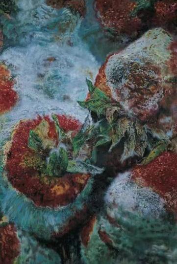 张小涛 《溃烂的山水》300×200cm 布面油画2006
