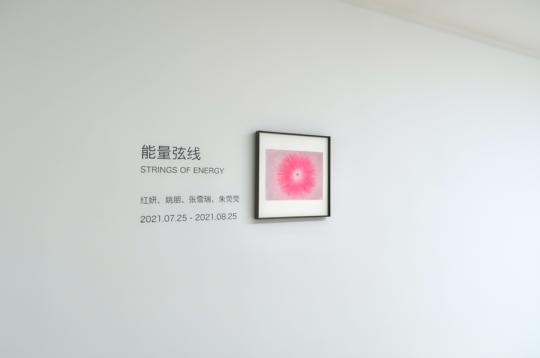 """新氧艺O2art夏季群展 四位艺术家呈现""""能量弦线"""""""