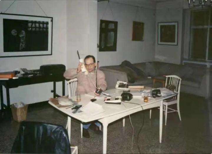 1990年代初的布朗