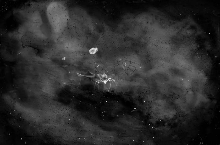一个1839元的民间奖项,能搅动摄影圈这池深水吗?