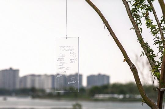 谭英杰《树下的想象》H40×0.2cm 透明彩色亚克力 2021