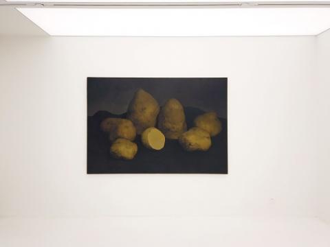闫冰 《七个土豆》 150×220cm 布面油画 2016