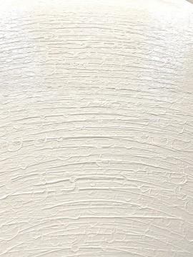 杨黎明 《灰白色系列》 100×81cm 布面油画 2020